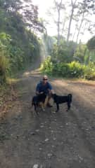 Carl on a rainforest hike with Taz and Minnie