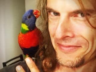 A friend's parrot.