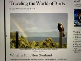 As an avid birdwatcher and hiker, I love New Zealand