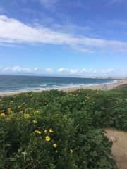 Redondo-Torrance Beach