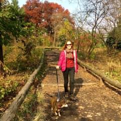 Walking Sadie in Prospect park, Brooklyn