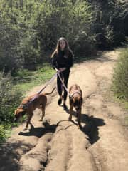 My daughter and 2 of our reg walkers