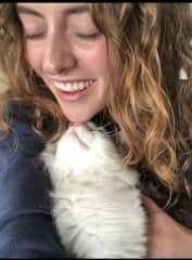 Kitten kisses 2