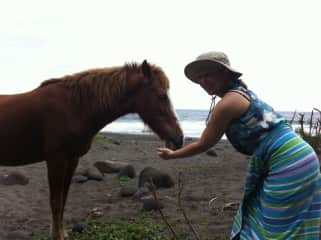 Colette found a horse friend on the beach!