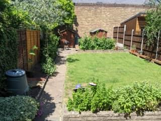Our sunny garden