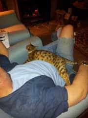 Greg and Idris sharing an after dinner  nap.