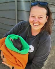 With a baby wombat in a rescue centre in Tasmania :)