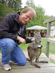 Visiting the kangaroo farm in Lake Country