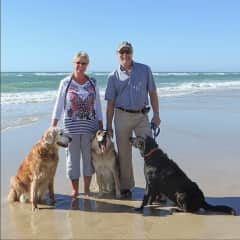 At the beach with Taz and her buddies, Shadow and Miracle.