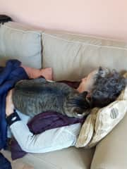Nap time in Spain