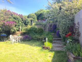 Our garden in the summer