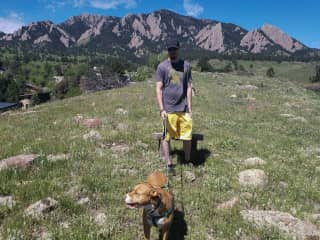 Buddy out for a daily walk in Boulder, Colorado.