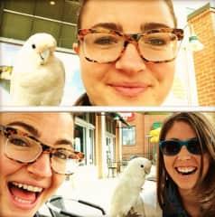 Love it when a random bird drops by :D