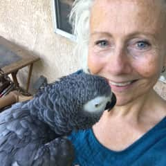 Tamra with African Grey Ruby in California
