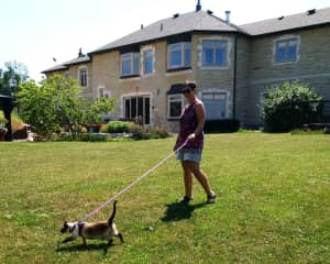 Akila, the cat, taking Wanda for a walk in Burlington!