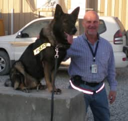 Worked with the K9 unit while in Afghanistan, 2009.