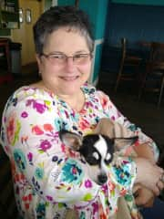 My sweet mom, Anita, with her new Chihuahua. She will join me a time or two and I will add her information as the second sitter when needed.