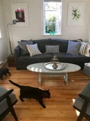 living room/2