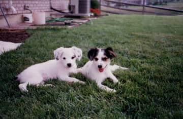 Adorable Bonnie & Nikki in Ohio