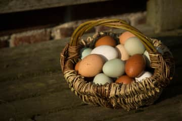 Eggs from the Hens