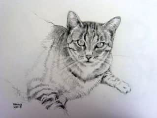 Portrait of Chi in Spain drawn by Mona