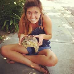 Me with my neighbors turtle I rescued when he escaped their yard