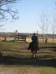 John and Luke (Horse)