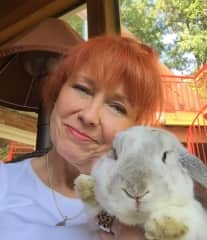 with Bella the bunny
