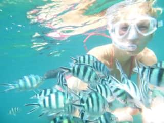 Thailand/ I like snorkeling