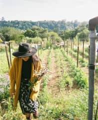 Harvest at a friend's garden.