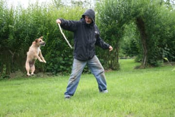 Paul playing with dog Ginger, a Jack Russel + Norfolk terrier mix
