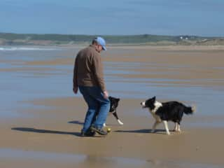 Jim playing ball with Bess and Tip on a Normandy beach.