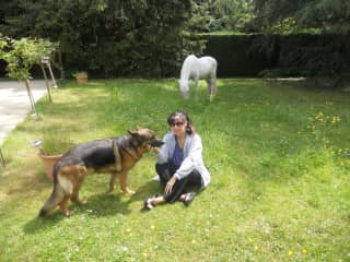 Susa, the dog adopted from a refuge in Spain and my mother's filly, Cora - at home!