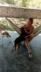 Me with a friend's rescue dogs in Peru.