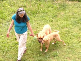 Sandi walking the dogs back to the deck after play time