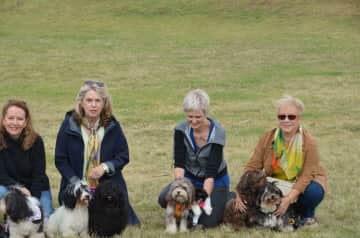 This is Deb on the far right with Luis and Ella at a Havanese meet and greet in Sydney