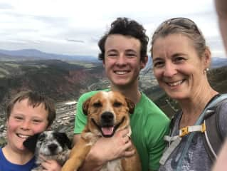 Hiking with our dogs Sadie & Sammy