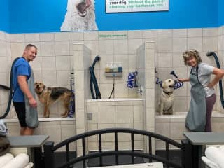 Best way to spend a Friday night.  These are my sons dogs, he needed helped at the local doggie bath house.  I gladly accepted the call for help.