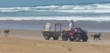 Brett, using the quad that was provided, at Bayly's Beach New Zealand for the twice per day run of a Libby the Lab, and Reg, the huntaway.