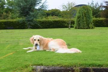 Emma in garden