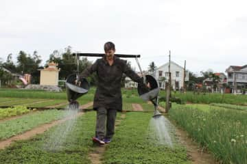 A bit of old fashioned watering in a Vietbam market garden.