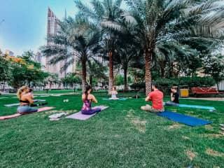 I am an Ashtanga Yoga Instructor
