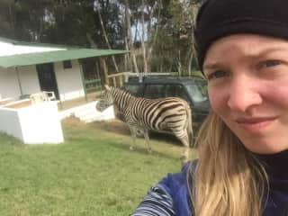 South Africa on a farm to train animals for films