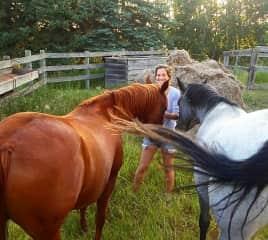 Natasha and horses at her moms farm