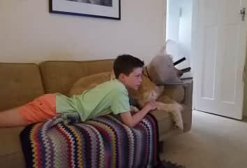 Hamish and Arlo the TV addicts.