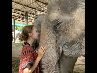 In an elephant sanctuary in Thailand