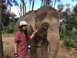 Jeff and I had the amazing opportunity to visit and elephant sanctuary when we were in Thailand.