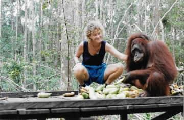 Feeding orphaned orangutans in Borneo rehab reserve.