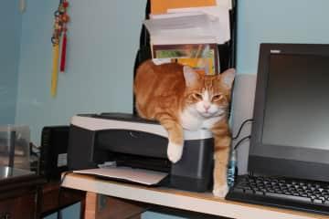 Levi, my HR Director