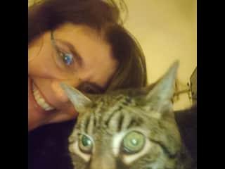 My sweet old kitty Obie